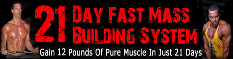 What Is The Best Protein Powder For Building Muscle Mass
